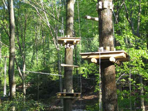 Outplay Adventures Treego Business Opportunity Aerial Adventure Course Treetop Course